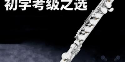 笛子十大品牌排行榜,笛子哪个品牌比较好?
