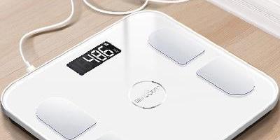 健身常用的健康秤十大排行