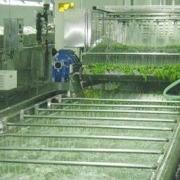 国内主流的果蔬清洗机品牌有哪些,果蔬清洗机十大品牌